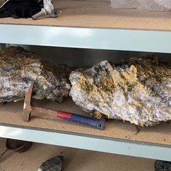 Aussie Nickel Miner Hits Golden Mother Lode, Including Two Huge Rocks Worth $5 Million